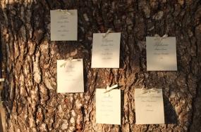 организация свадьбы в италии, свадьба в тоскане, организовать свадьбу в италии