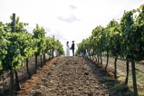 vineyard wedding in tuscany