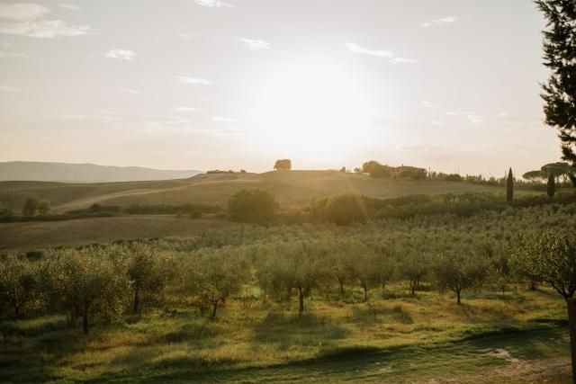 Тосканский пейзаж / Tuscany landscape